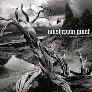 Painted Mantra by MUSHROOM GIANT album cover