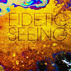 Eidetic Seeing by EIDETIC SEEING album cover