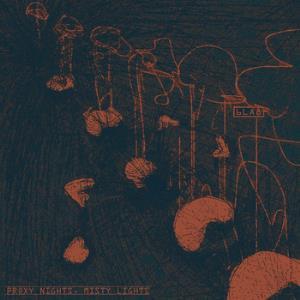 Proxy Nights, Misty Lights by 6LA8 album cover