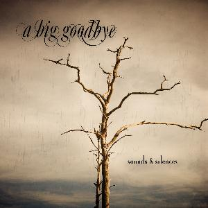A Big Goodbye - Sounds & Silences CD (album) cover