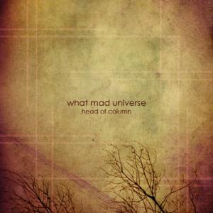 What Mad Universe Head Of Column album cover