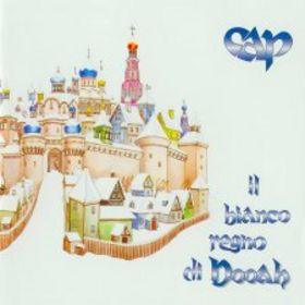 Il Bianco Regno Di Dooha by CONSORZIO ACQUA POTABILE album cover