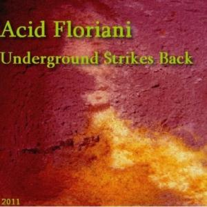 Acid Floriani Underground Strikes Back album cover