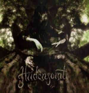 Hiidensointi by HIIDENSOINTI album cover