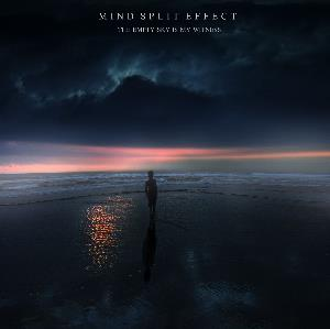Mind Split Effect The empty sky is my witness album cover