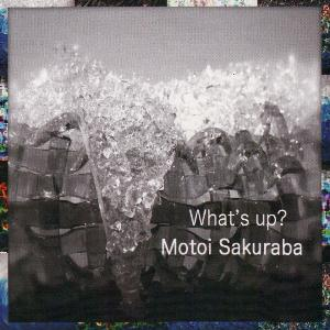 Motoi Sakuraba What's Up? album cover