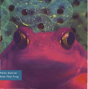 Peter Gabriel Kiss That Frog album cover