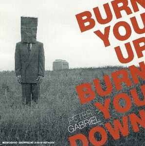 Peter Gabriel Burn You Up, Burn You Down album cover