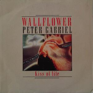 Wallflower by GABRIEL, PETER album cover