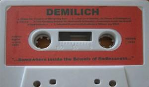 ...Somewhere Inside The Bowels Of Endlessness... by DEMILICH album cover
