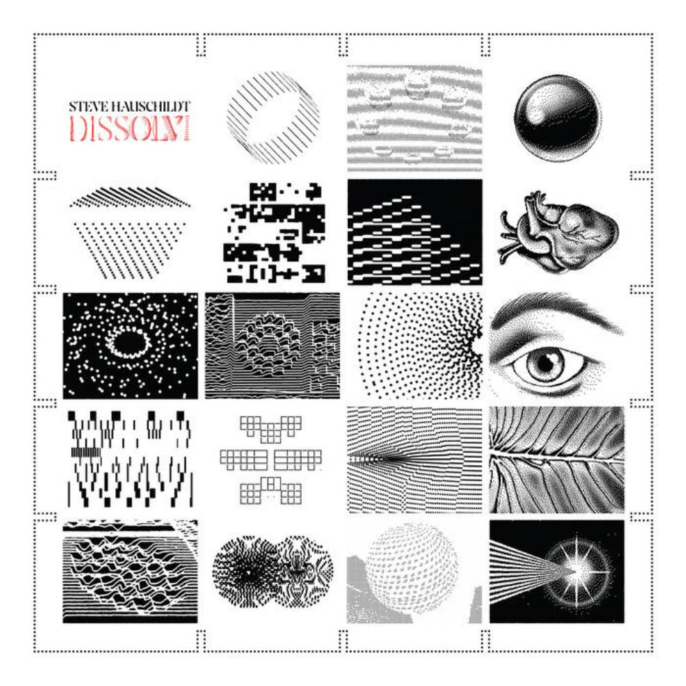 Dissolvi by HAUSCHILDT, STEVE album cover