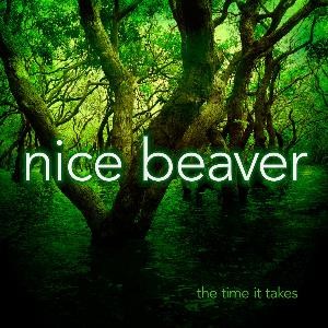 The Time It Takes by NICE BEAVER album cover