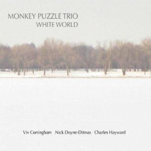 Monkey Puzzle Trio White World album cover