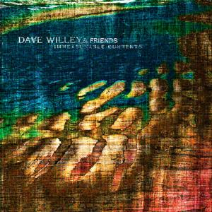 Dave Willey Immeasurable Currents album cover