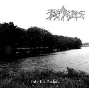 Falls Of Rauros Into the Archaic album cover