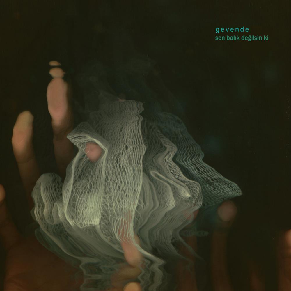Sen Balık Değilsin Ki by GEVENDE album cover
