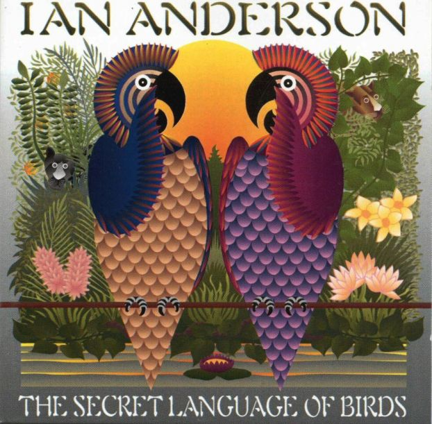 The Secret Language Of Birds  by ANDERSON, IAN album cover