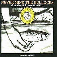 Fish - Never Mind The Bullocks CD (album) cover