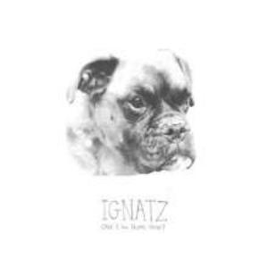 Ignatz Can I Go Home Now? album cover