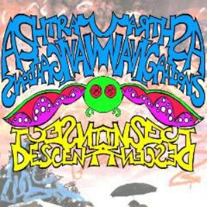 Ashtray Navigations - Insect Descent CD (album) cover