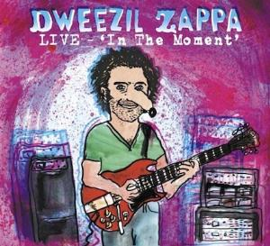Dweezil Zappa Live - In the Moment album cover
