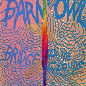 BARN OWL Bridge To The Clouds reviews