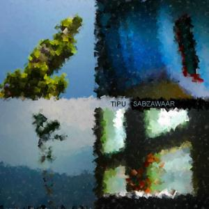 Brink Trip by TIPU SABZAWAAR album cover