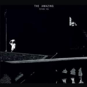 The Amazing - Picture You CD (album) cover