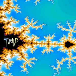 TMP by TMP (TOON MARTENS PROJECT) album cover