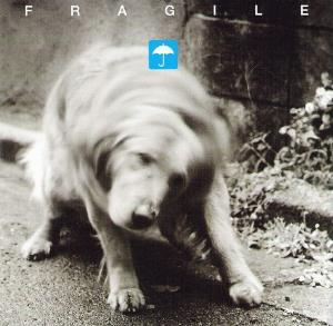 Fragile No Wet album cover