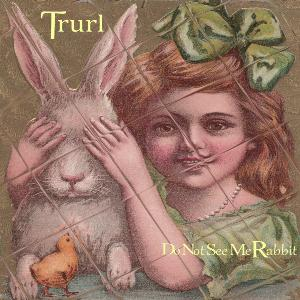Do Not See Me Rabbit by TRURL album cover