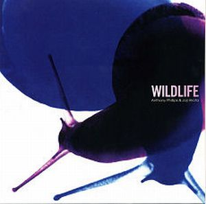 Anthony Phillips Wildlife album cover