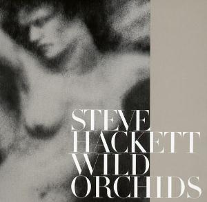 Steve Hackett Wild Orchids album cover
