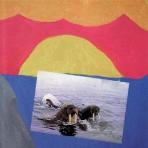 Vesikansi by AVARUS album cover
