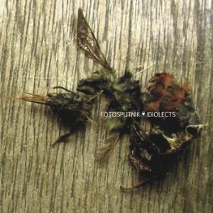 Idiolects by FOTOSPUTNIK album cover