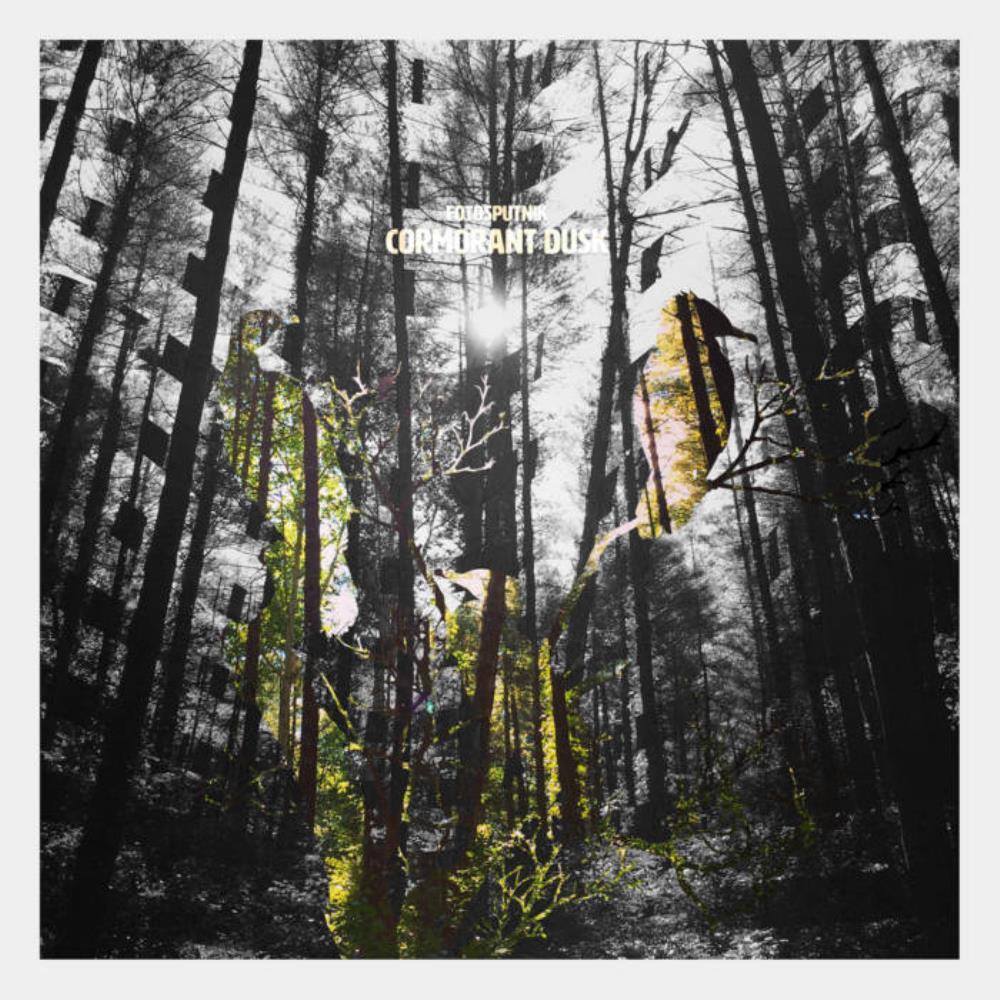 Cormorant Dusk by FOTOSPUTNIK album cover