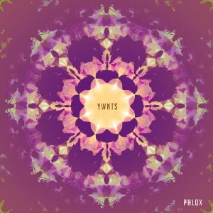 YWNTS by PHLOX album cover