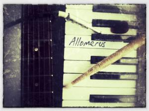 Allomerus - Allomerus CD (album) cover