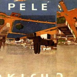 Pele People Living With Animals. Animals Kill People album cover