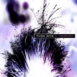 Purple Cerise Experience Purple Cerise Experience album cover