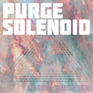 Blind Auspice by PURGE SOLENOID album cover