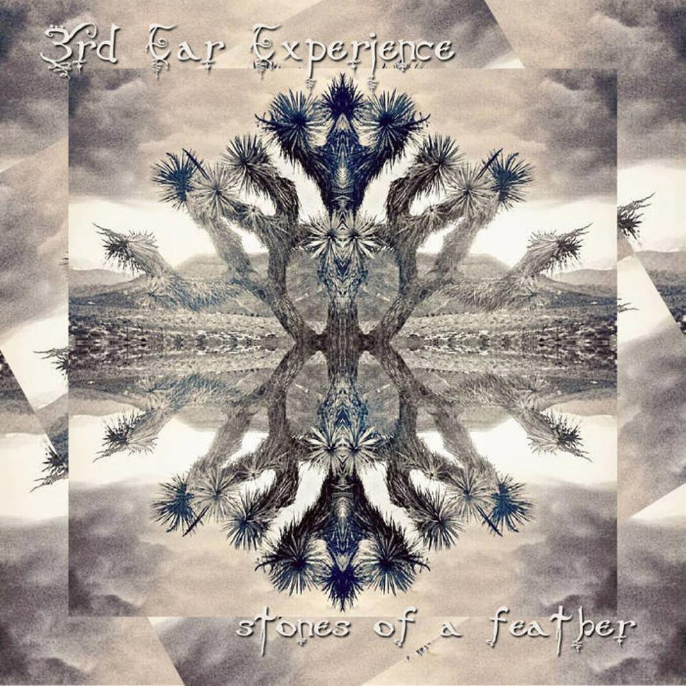 Stones Of A Feather by 3RD EAR EXPERIENCE album cover