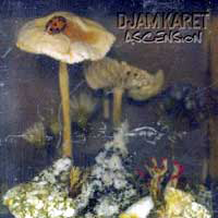 Djam Karet Ascension New Dark Age Vol. 2 album cover