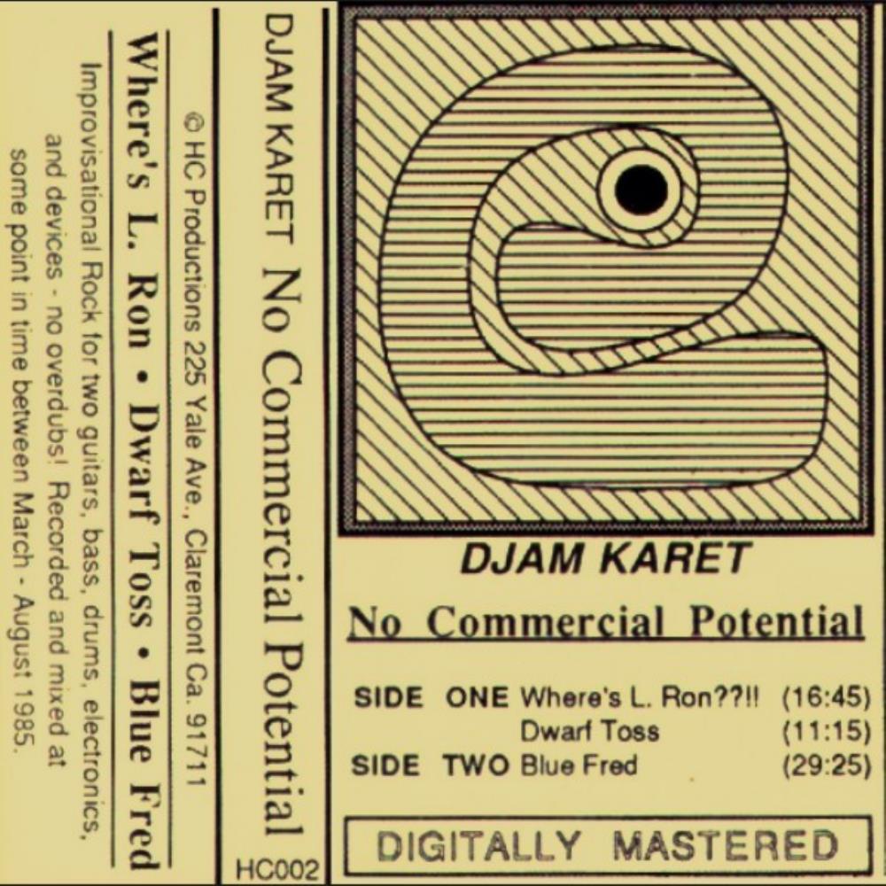 No Commercial Potential by DJAM KARET album cover