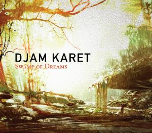 Swamp Of Dreams by DJAM KARET album cover