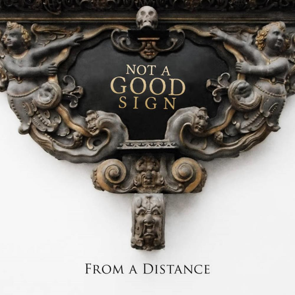 From A Distance by NOT A GOOD SIGN album cover