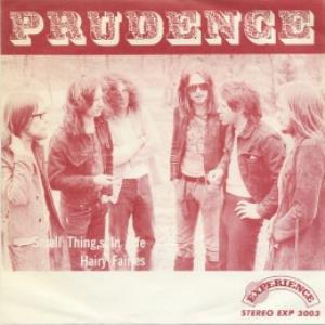 Prudence Small Things In Life / Hairy Fairies album cover