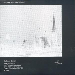 Mushroom's Patience Solo Tracks album cover