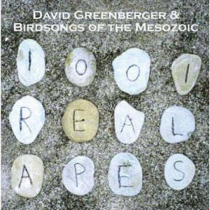 Birdsongs Of The Mesozoic 1001 Real Apes  (with David Greenberger) album cover