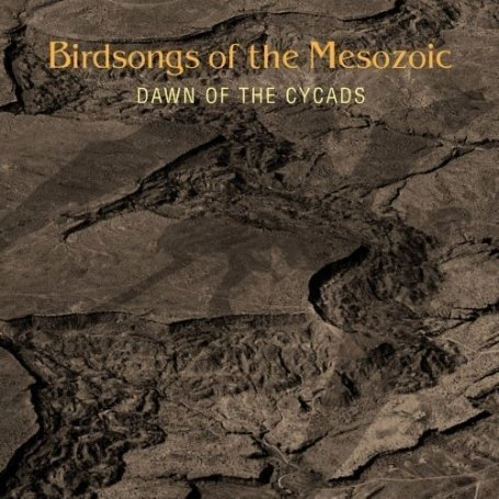 Birdsongs Of The Mesozoic Dawn of the Cycads album cover
